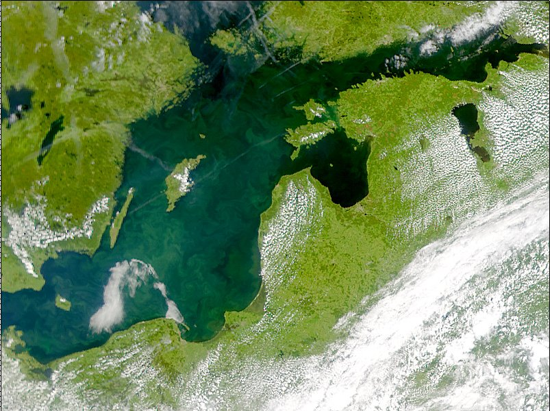 http://www.zonu.com/images/0X0/2010-07-02-11808/Phytoplankton-bloom-in-the-Baltic-Sea-2001.jpg