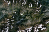 Satellite image of Andorra